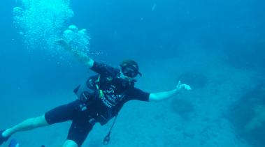 Diving at Koh Tao - Thailand